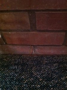 An image of a brick wall with a termite tube crawling up from the carpet.