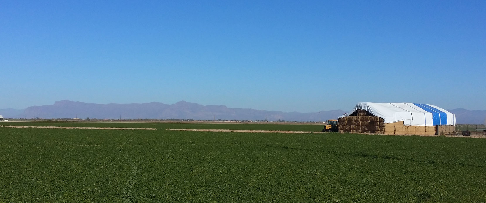 Header image of farmland in San Tan Valley with the Superstition Mountains in the background